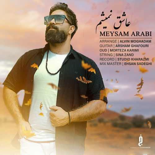 دانلود موزیک جدید میثم عربی عاشق نمیشم