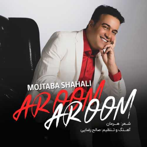 دانلود موزیک جدید مجتبی شاه علی آروم آروم